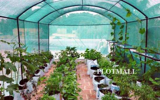Terrace Farming For Home In Kerala Terrace Garden Design