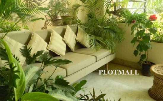 Terrace Farming For Home in Kerala, Terrace Garden Design ...